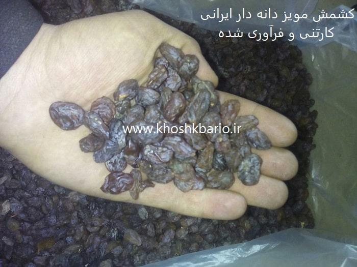 فروش کشمش مویز