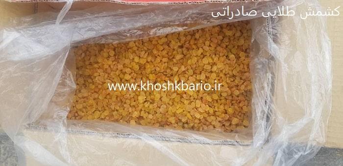 فروش کشمش در مشهد