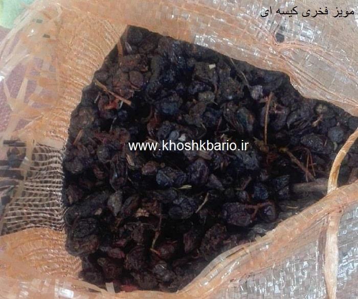 خرید مویز شیراز