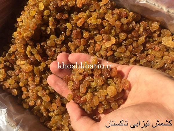خرید کشمش قزوین