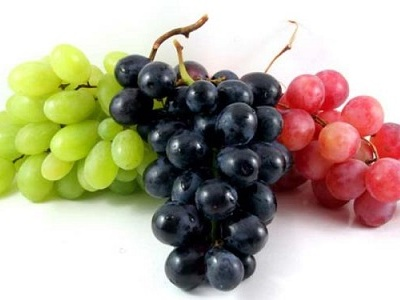 قیمت مویز انگور