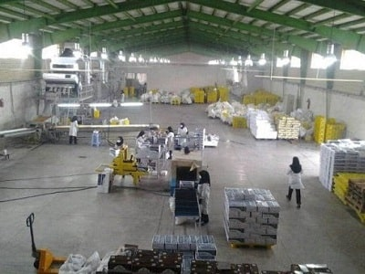 مرکز صادرات کشمش